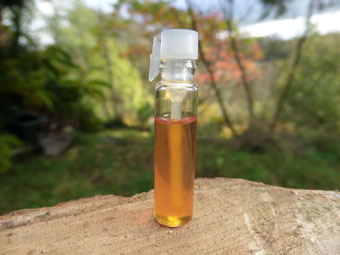 Rose & Patchouli Oil (1ml Sample)