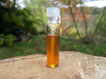 Golden Champa & Sandalwood Oil (1ml Sample)