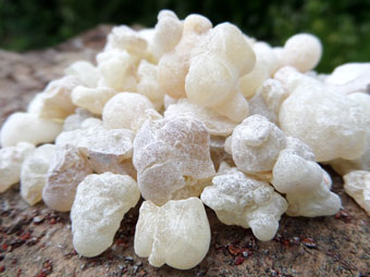 White Frankincense Resin