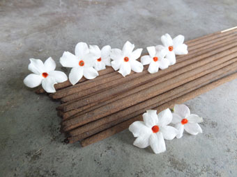 Absolute Parijata Blossom Incense