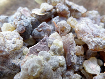 Black Frankincense Resin