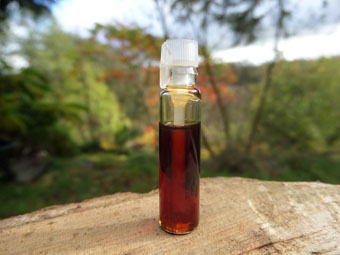 Jasmine Oil Perfume (1ml Sample)