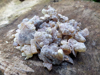 Organic Black Frankincense Resin